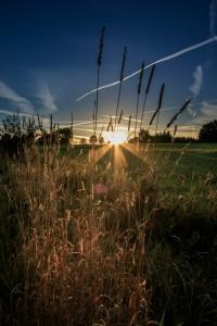 Sunrise - Dreifelden